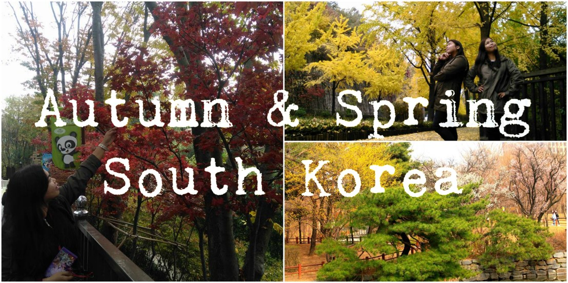gian05.wordpress.com|Autumn & Spring in South Korea
